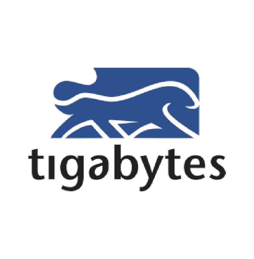 TIGABYTES